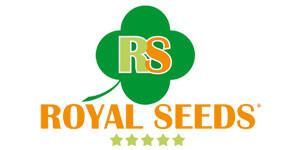 royalseeds-300x150